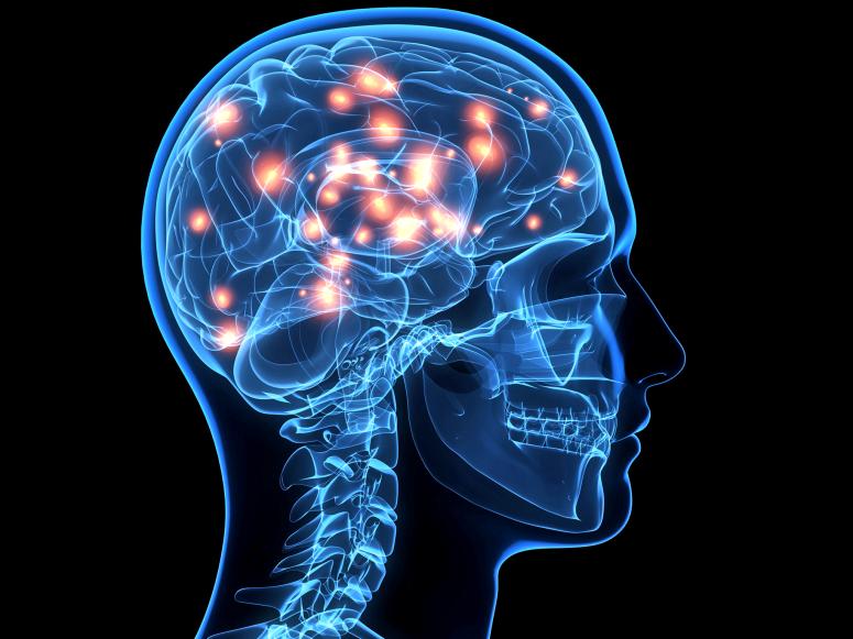 brain-gluten